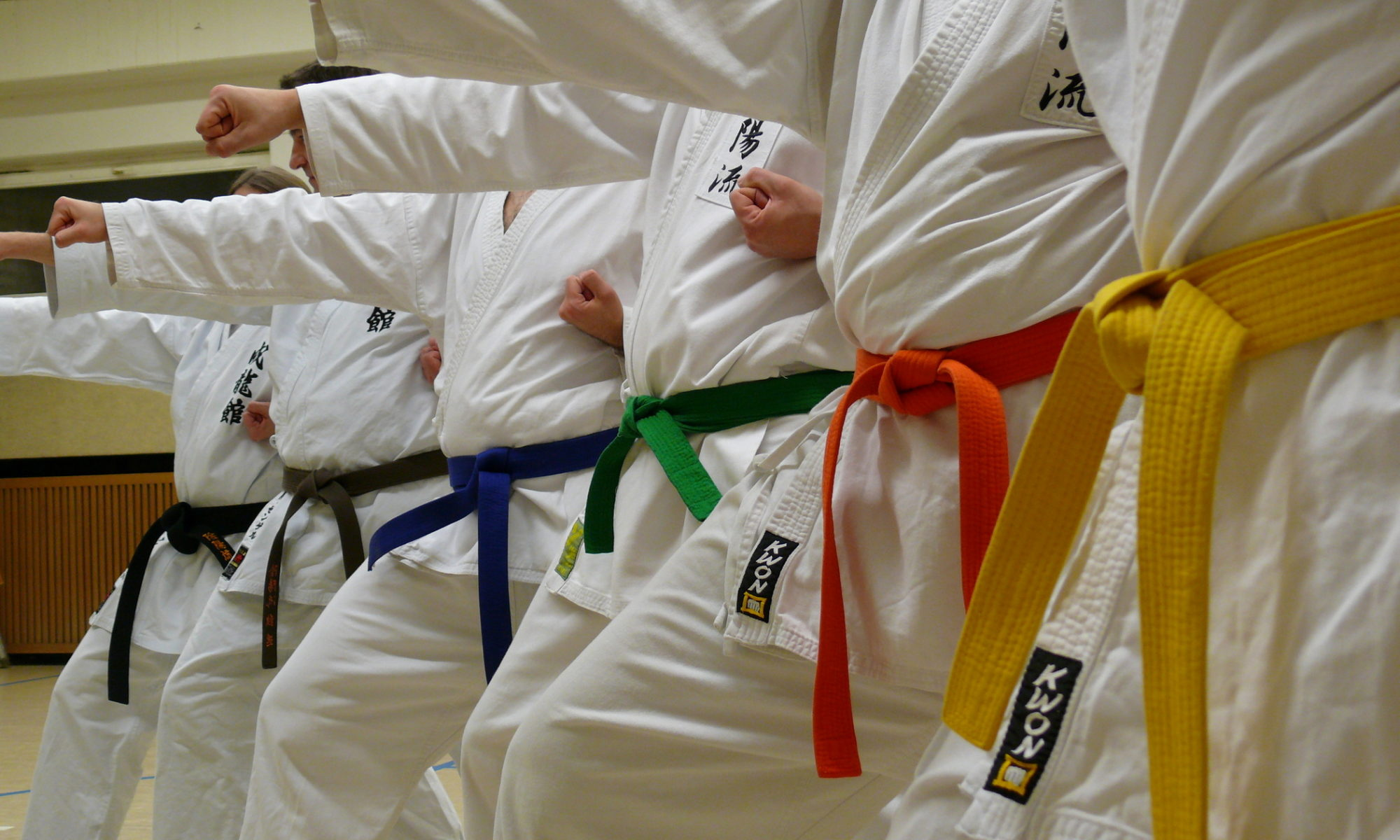 Inyo-Ryu Karate e.V. Düsseldorf